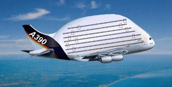 A390 IMAGE NO 1
