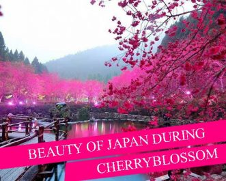 beauty-of-japan-during-cherry-blossom-1