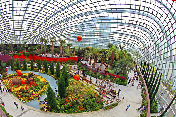 rsz_flower_dome