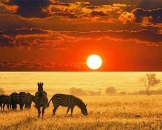 africa-desktop1