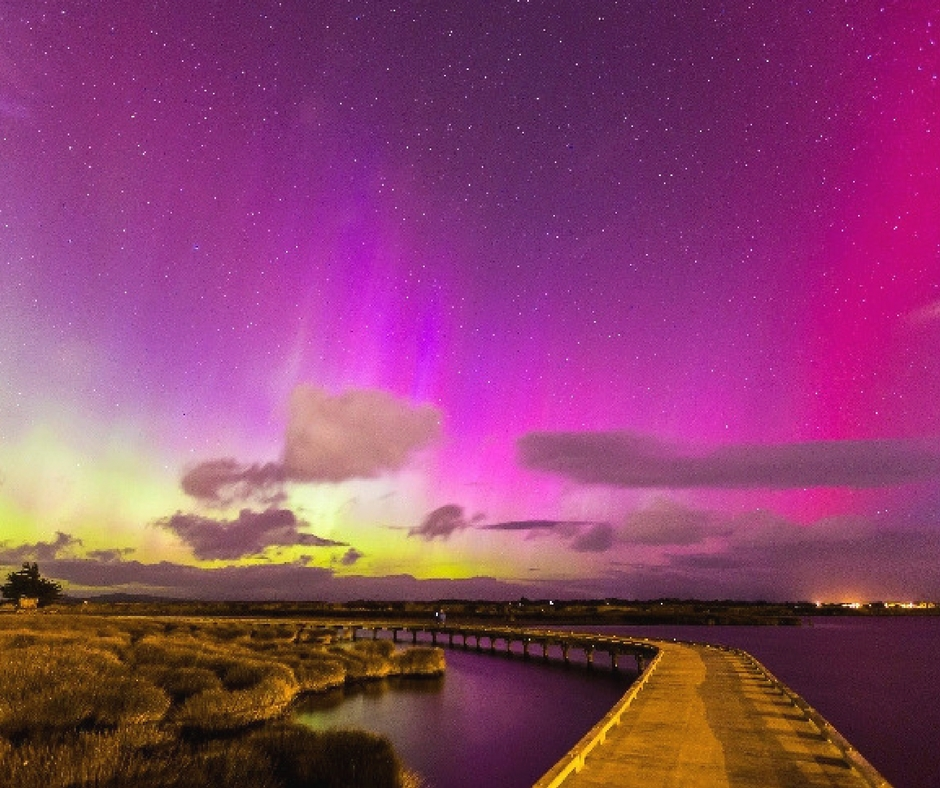 Look at the clearest sky in New Zealand with Flamingo Travels